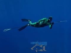 Headhunter Predator Pole Spear